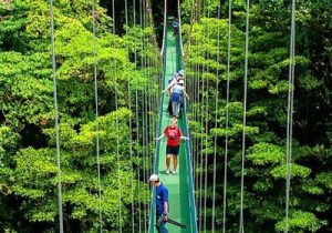 Aventuras en Monteverde.